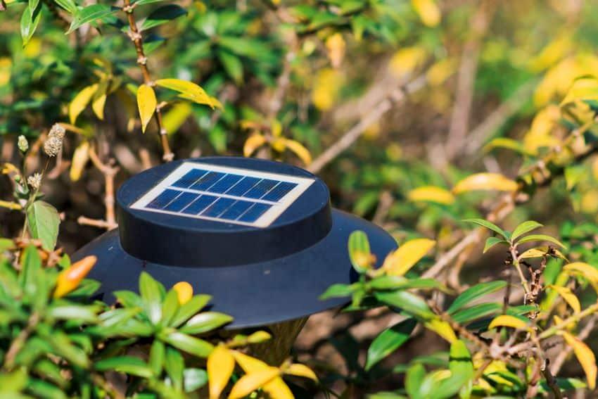 Por que las lamparas solares son autosostenibles