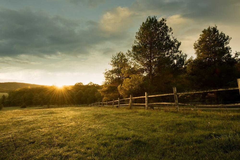 energía solar para campos y fincas